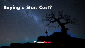 buying a star: cost